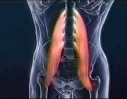 Una alimentación a la radiculitis y la osteocondrosis