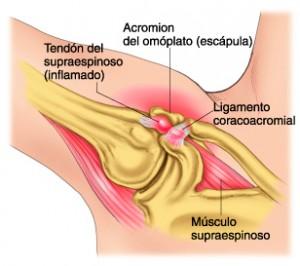 fisioterapeuta-madrid-2