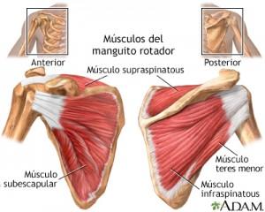 fisioterapeuta-madrid-3
